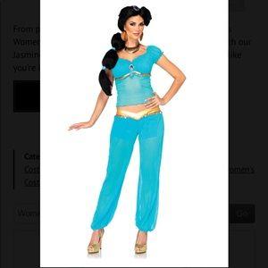 Adult Princess Jasmine costume + wig